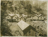 Logging camp