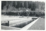 Fish hatchery, Cathlamet, WA