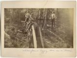 Fallers, Whidbey Island, Washington, 1887