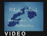 Whidbey Island, photographed in Kodacolor [2002 production]