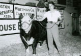 Palouse Empire Fair Queen with prime steer at the 1959 Palouse Empire Fair