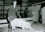 Bill Gilchrist with Grand Champion fat hog, Palouse Empire Fair, Mockonema, Washington, 1959