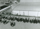 Livestock judging at the Palouse Empire Fair