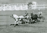 Arena show, Palouse Empire Fair, Mockonema, Washington, 1964