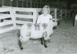 Award winning sheep, Palouse Empire Fair, Mockonema, Washington, 1967