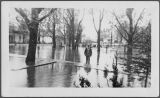 Flood of 1948, Farmington, Washington