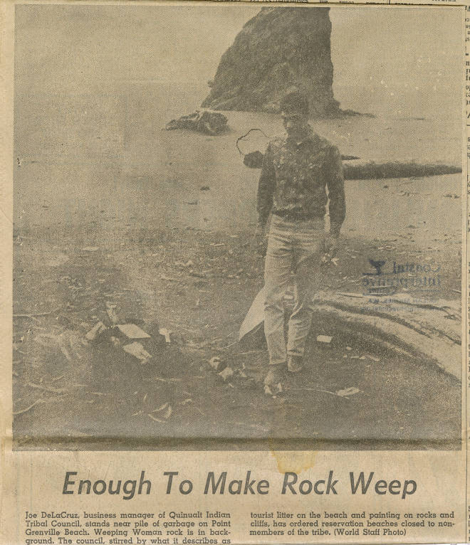 Enough to make rock weep, Point Grenville Beach, Grays